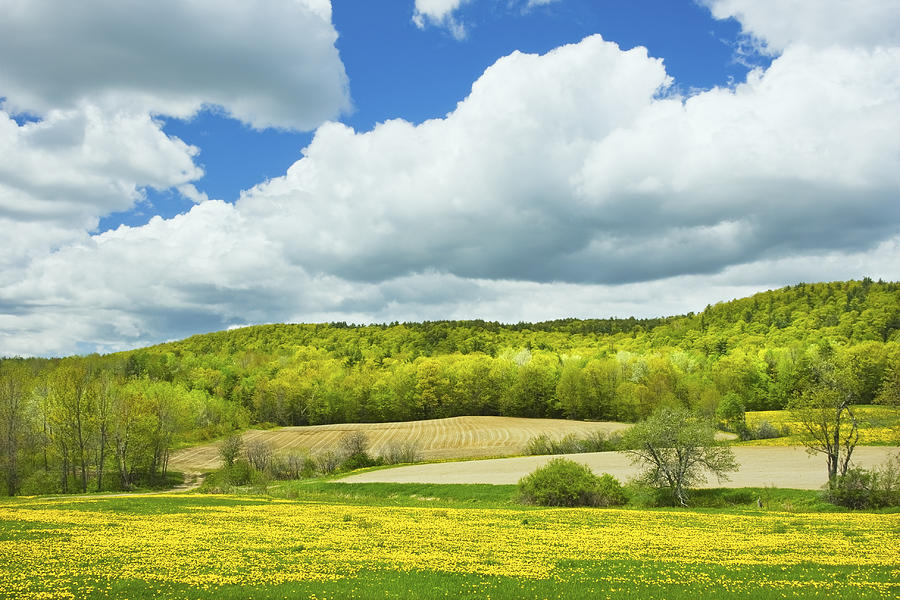 Beautiful Spring Photograph   Spring Farm Landscape And Blue Sky In Maine By Keith  Webber Jr