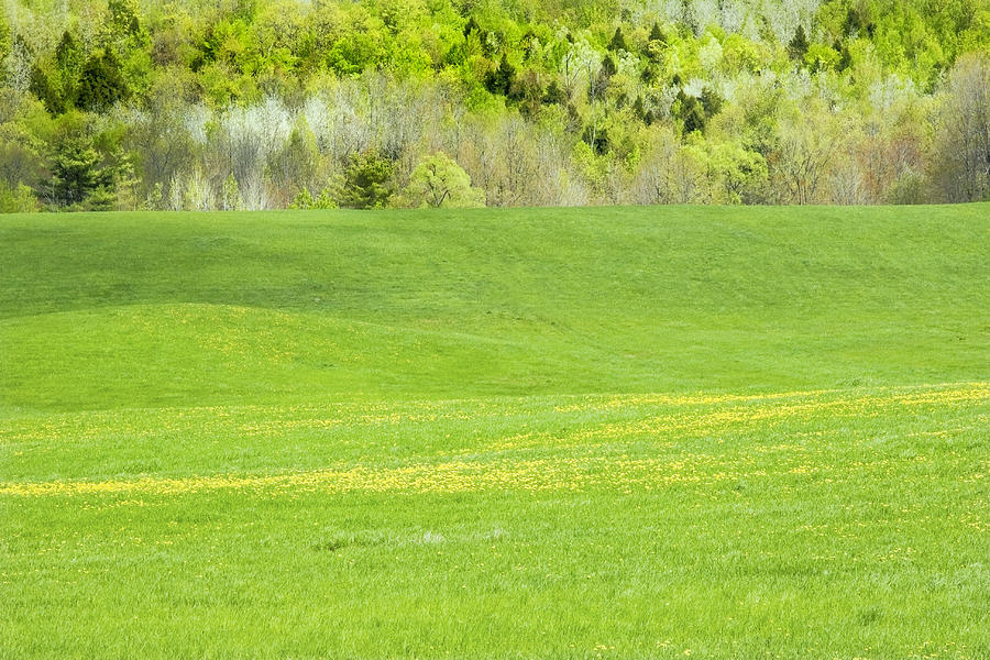 Hay Field Photograph - Spring Farm Landscape In Maine by Keith Webber Jr