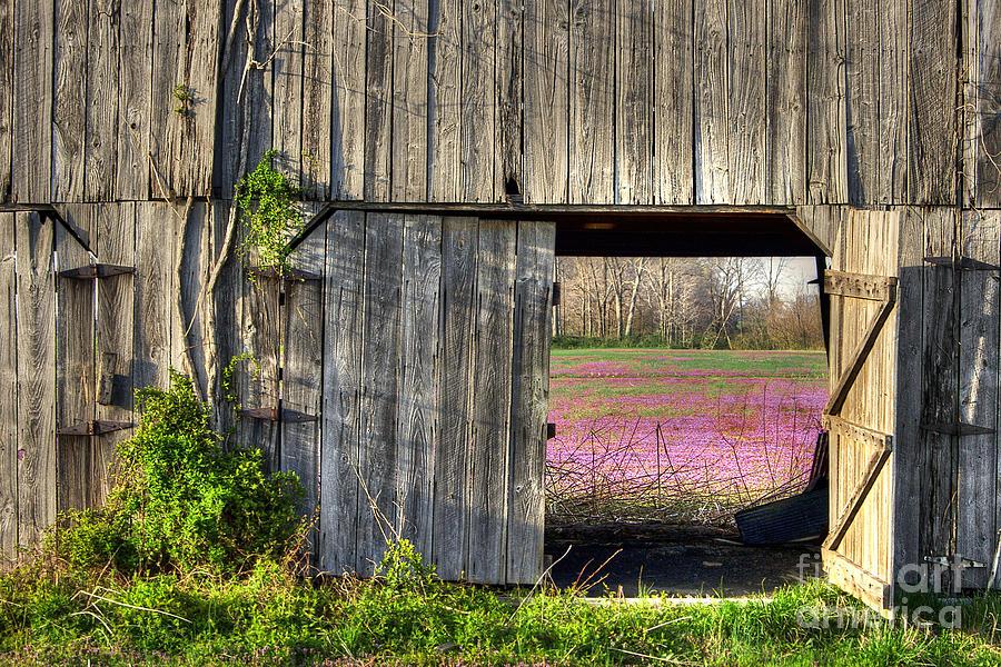 Horizontal Photograph - Spring In Kentucky by Larry Braun