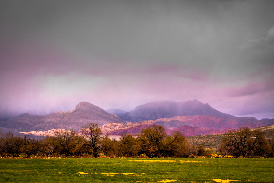 Red Rock Photograph - Spring Mountain Ranch In Red Rock Canyon by David Patterson