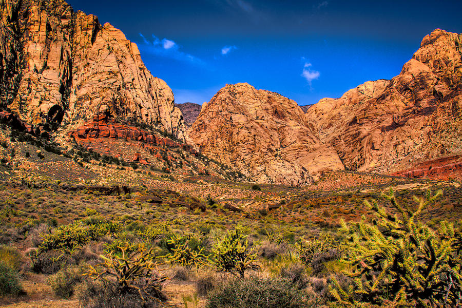 Red Rock Photograph - Spring Mountain Ranch In Red Rock Canyon II by David Patterson