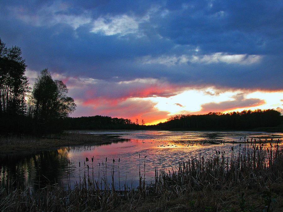 Spring Photograph - Spring Sunset by Sandra Longstreet