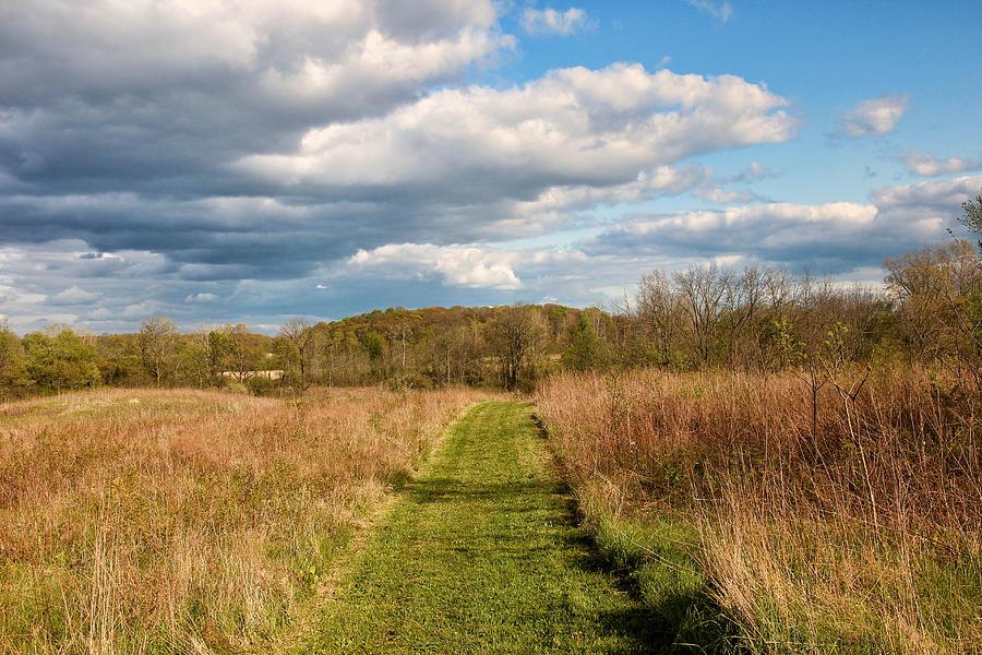 Landscape Photograph - Springs Mowed Path by Rachel Cohen