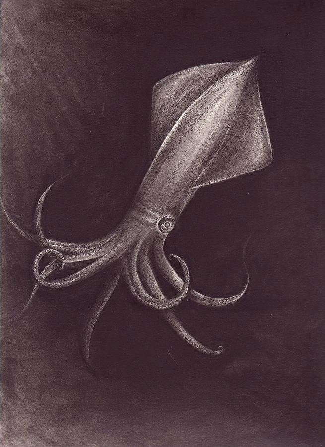 Sea Drawing - Squid 2 by Arika Gloud