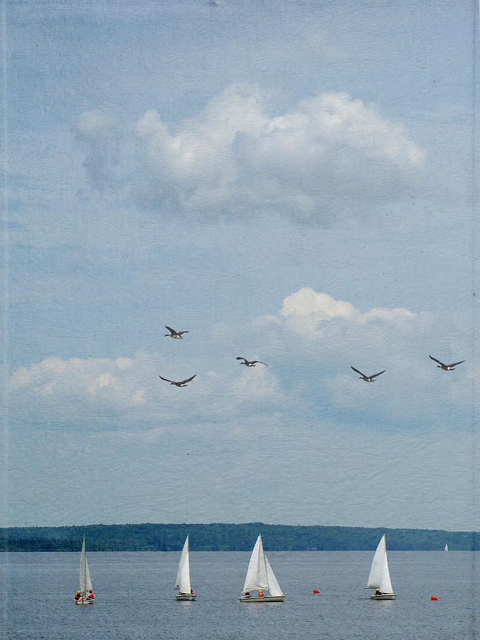 Vertical Photograph - Ssailboats On River by Francois Dion