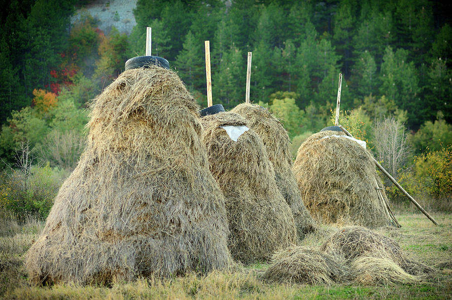 Horizontal Photograph - Stacked Hay by Gunay Mutlu
