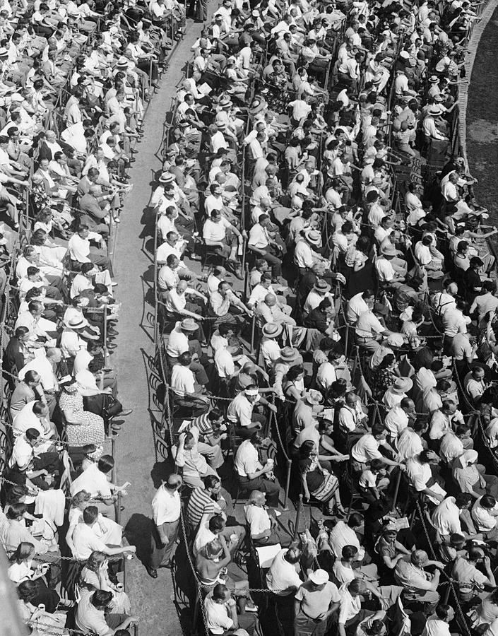 Adults Only Photograph - Stadium Crowd by George Marks