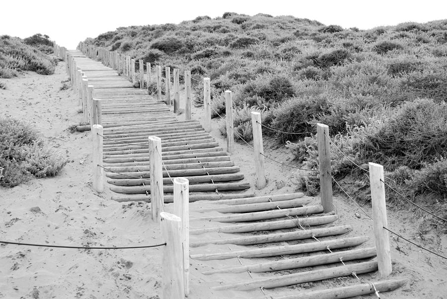 Stairs at Baker Beach by Shane Kelly