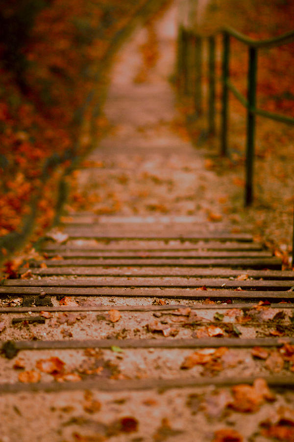 Stairs Photograph - Stairs by Vail Joy