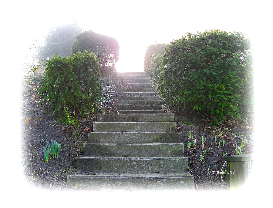 2d Photograph - Stairway To A New Beginning by Brian Wallace