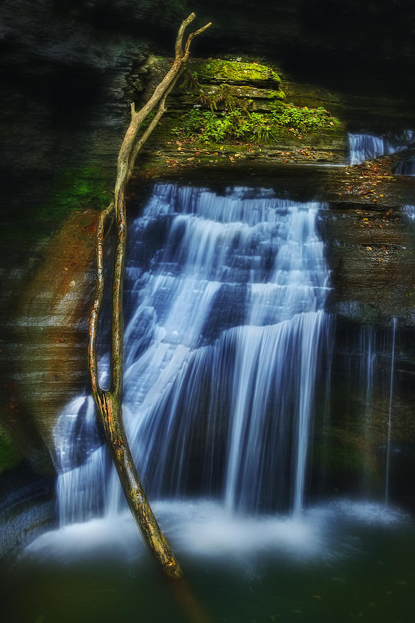 Waterfall Photograph - Standing In Motion by Evelina Kremsdorf