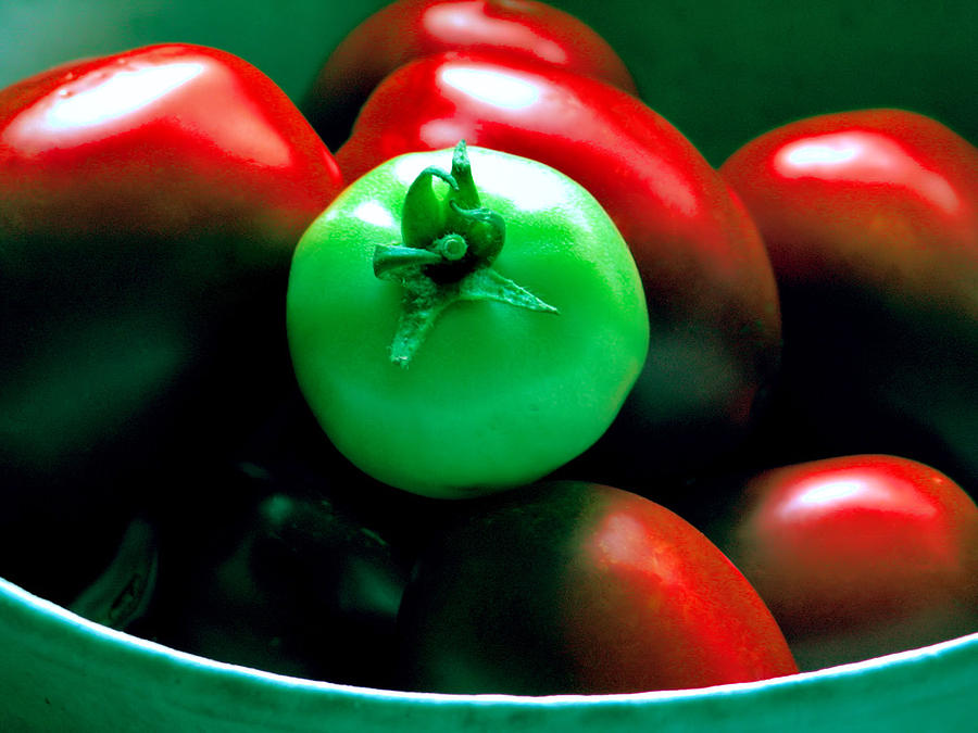 Tomato Photograph - Standing Out In A Crowd by Rory Sagner