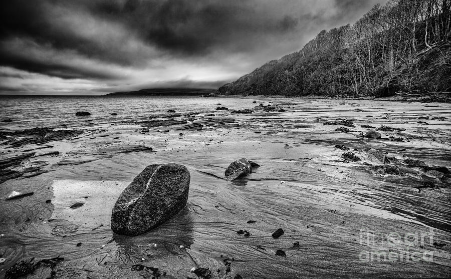 Ayrshire Photograph - Standing Still by John Farnan