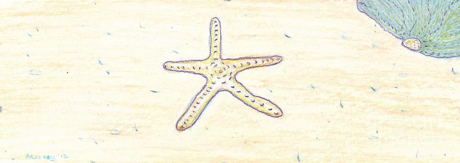 Starfish Drawing - Starfish 1 by Michael Mooney
