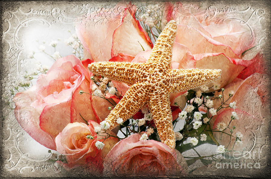 Pink Photograph - Starfish And Pink Roses by Andee Design