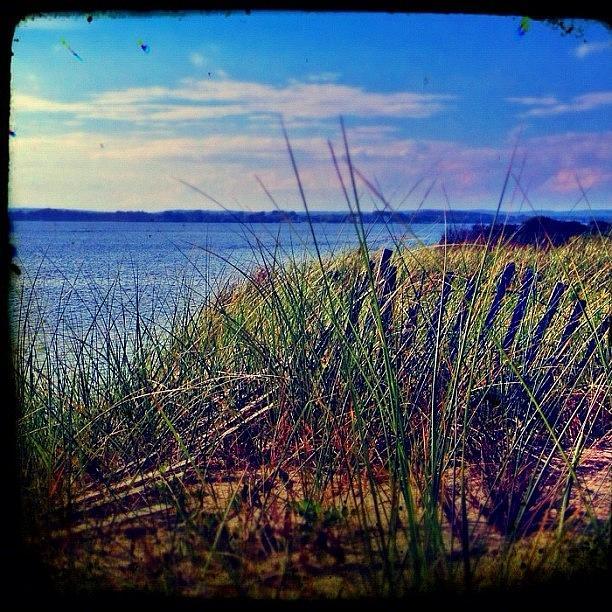 Summer Photograph - #statigram #instamood #all_shots by Evan Kelman