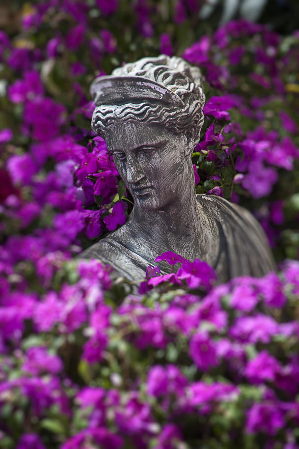 Statue Photograph - Statue In The Garden by Garry Gay