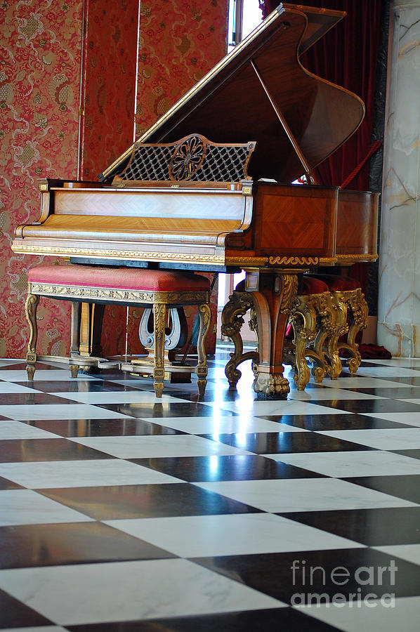 Grand Piano Photograph - Steinway by Robert Meanor
