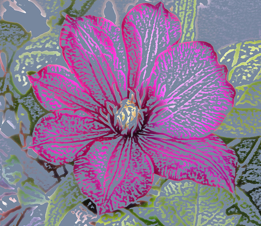 Stencil Of Magenta Flower Photograph by Mary Sedivy