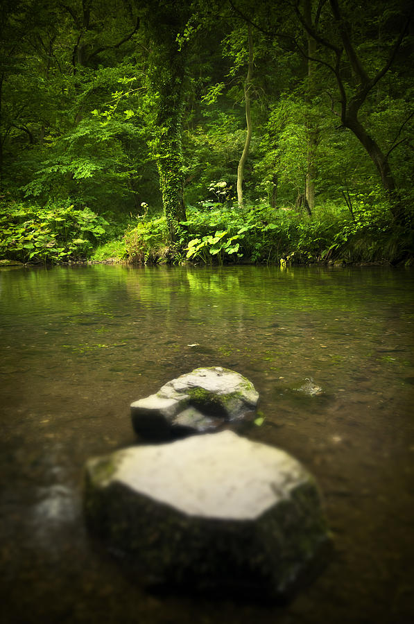 Background Photograph - Stepping Stones by Svetlana Sewell