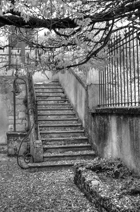 Stairway Photograph - Steps by Jan Carr