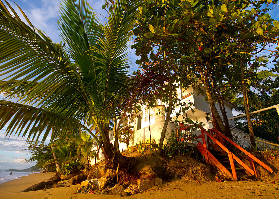 Puerto Rico Photograph - Steps To The Beach by Tim Fitzwater