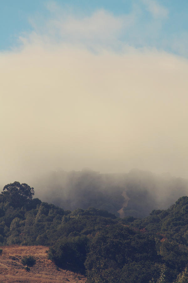 Mist Photograph - Still Hanging On by Laurie Search