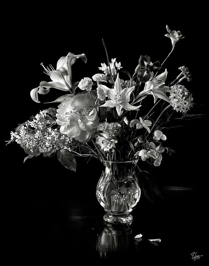 Still Life In Black And White Photograph By Endre Balogh