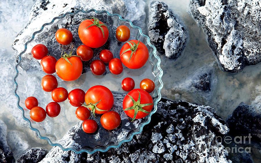 Tomatoes Photograph - Still Life In The Nature by Agusta Gudrun Olafsdottir
