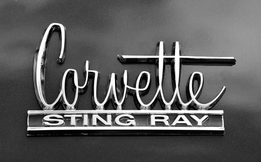 Corvette Sting Ray Photograph - Sting Ray by David Lee Thompson