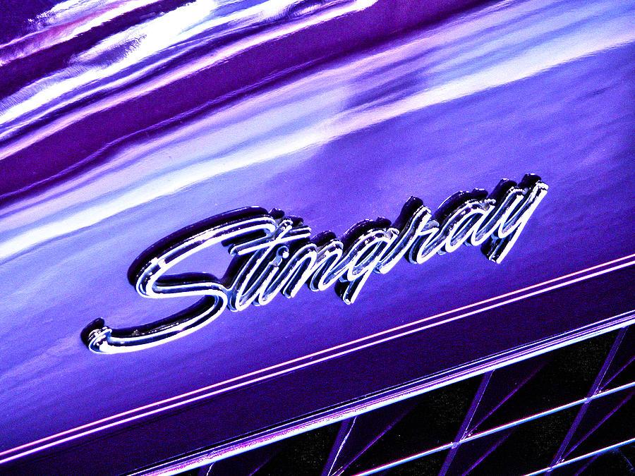 Automobile Photograph - Stingray by Bill Robinson