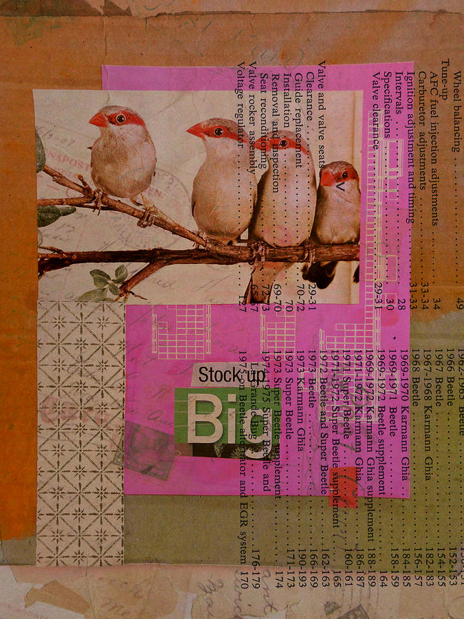Collage Mixed Media - Stock Up Big by Adam Kissel