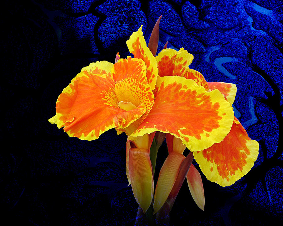 Flowers Photograph - Stolen Moment by Michael Taggart