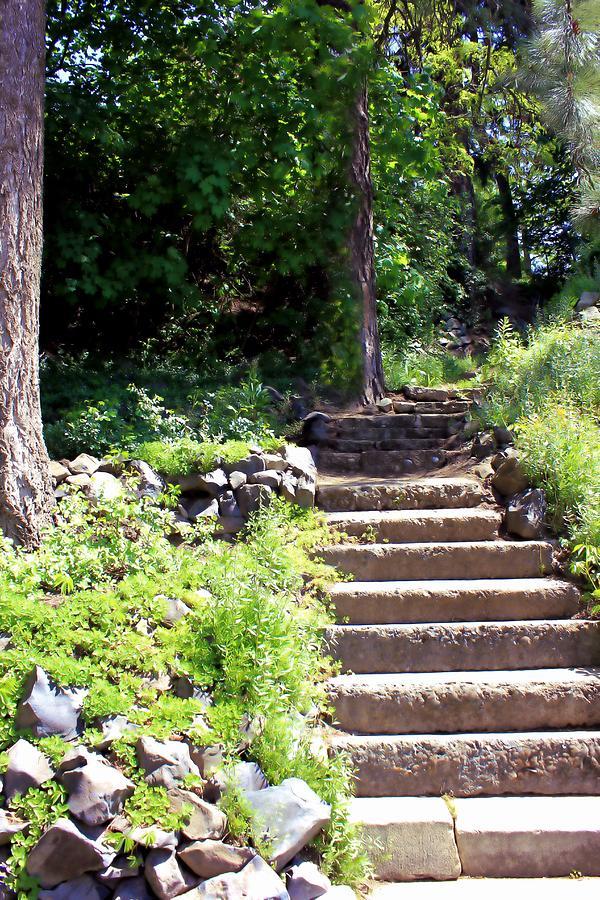 Steps Photograph - Stone Steps by Myrna Migala