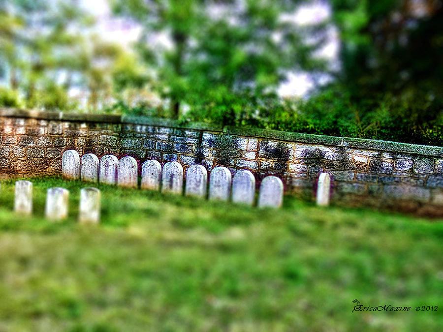 Civil War Photograph - Stones River Battlefield by EricaMaxine  Price