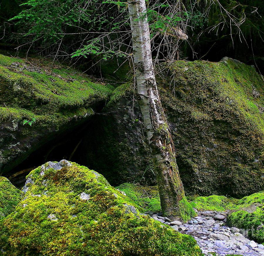 Landscape Photograph - Stonescape I by Michael Wyatt