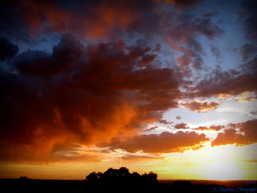 Albuquerque Photograph - Stormy Sunset Over A Tree Canopy by Aaron Burrows