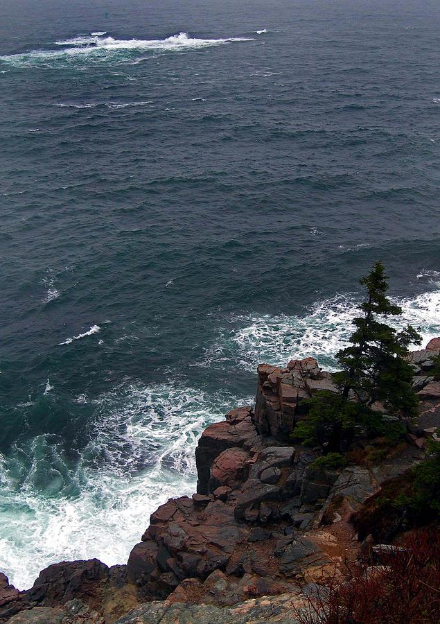 Maine Photograph - Straight Down by Skip Willits