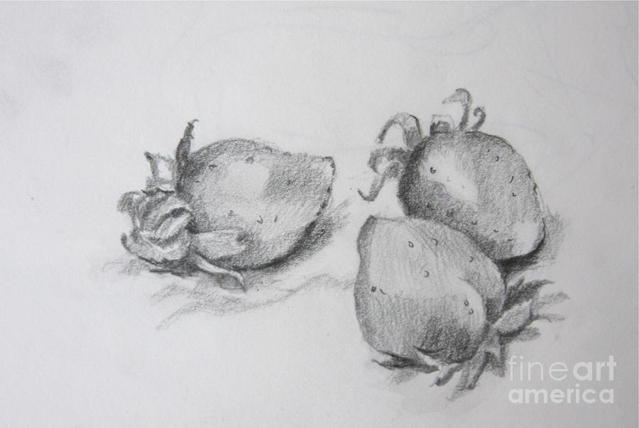 Strawberries Drawing - Strawberries by Jan Bennicoff
