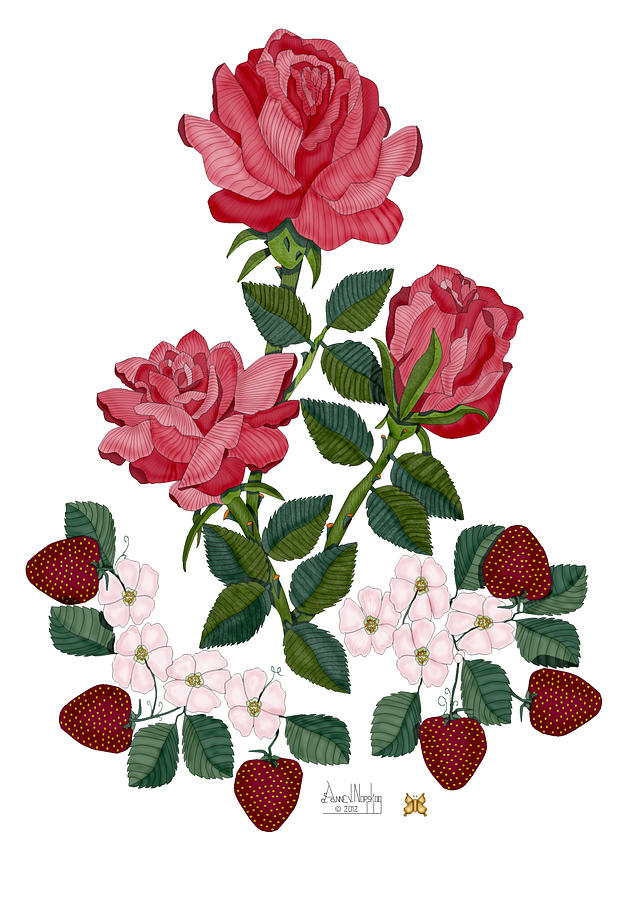 Roses Painting - Strawberry Wine and Roses by Anne Norskog