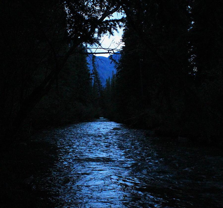 Stream Photograph - Stream In The Deep Dark Forest by Donna Barker