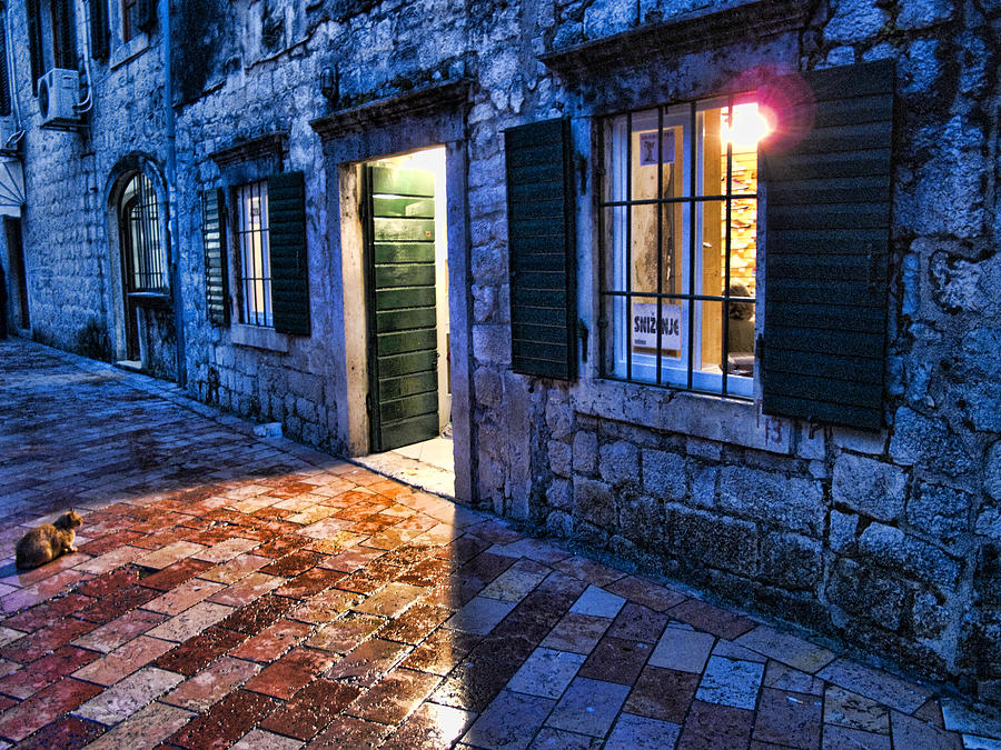Cat Photograph - Street Scene In Ancient Kotor Montenegro by David Smith