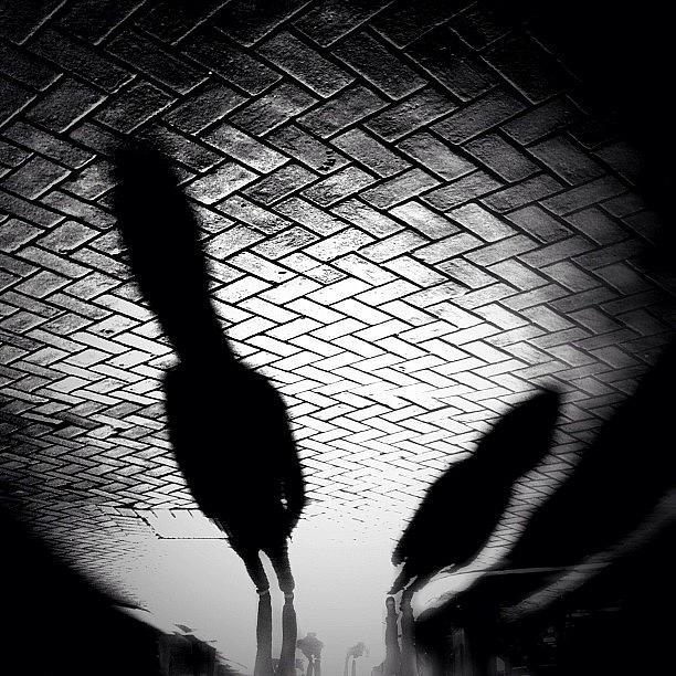 Noir Photograph - Streetwise. Last Sun/shadow Post For by Robbert Ter Weijden