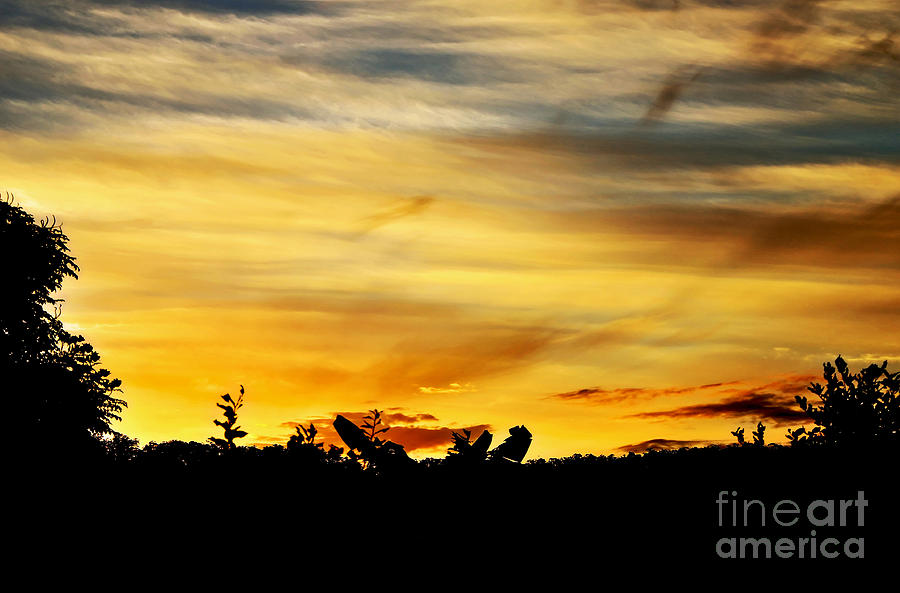 Photography Photograph - Stripey Sunset Silhouette by Kaye Menner