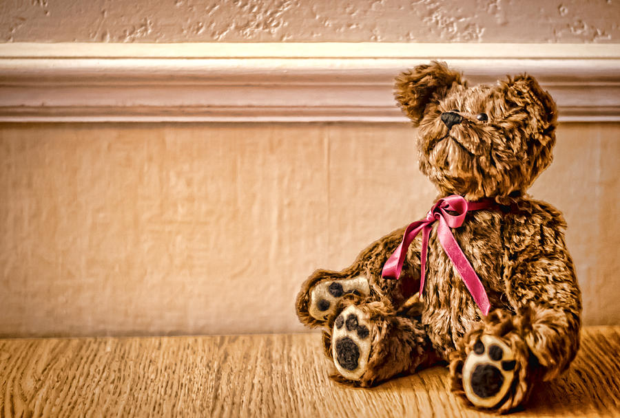Teddy Bear Photograph - Stuffed Friend by Heather Applegate