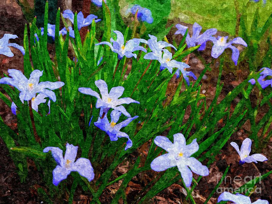 Spring Photograph - Styling In Blue by Nancie DeMellia