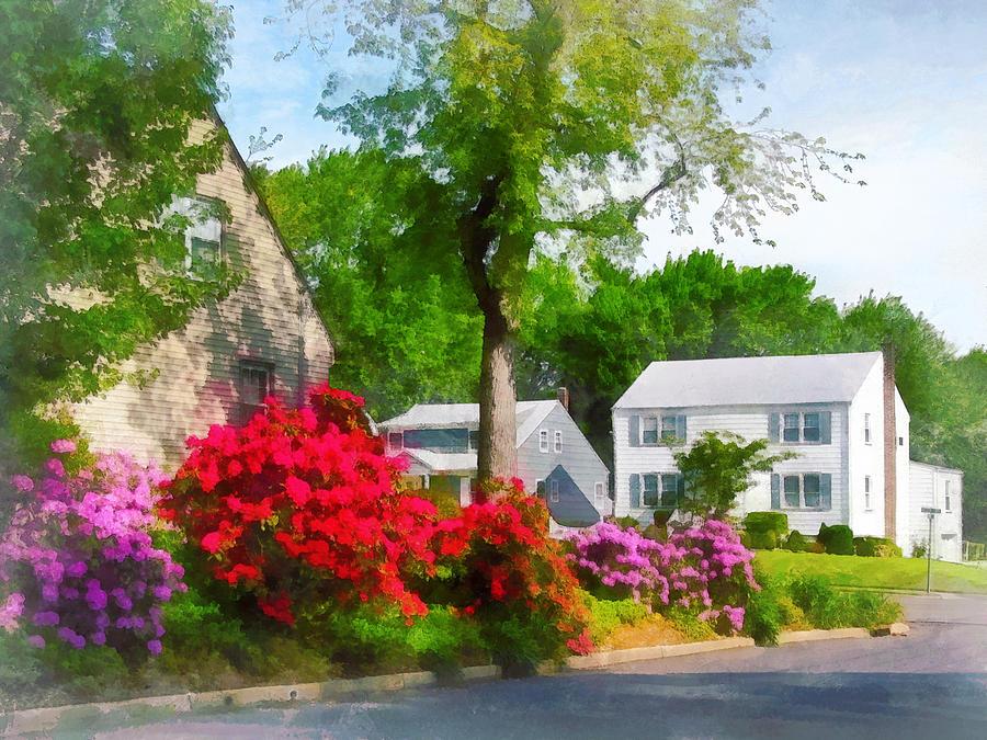 Azalea Photograph - Suburban Azalea Garden by Susan Savad