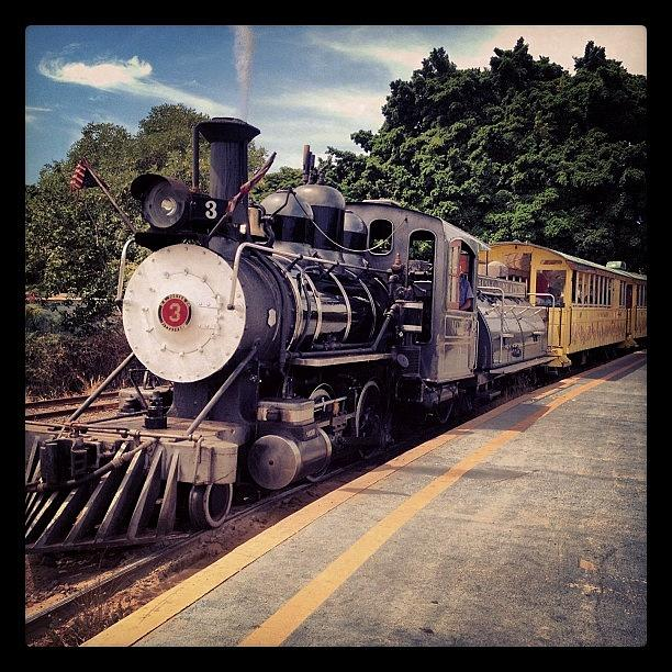 Locomotive Photograph - Sugar Cane Train by Darice Machel McGuire