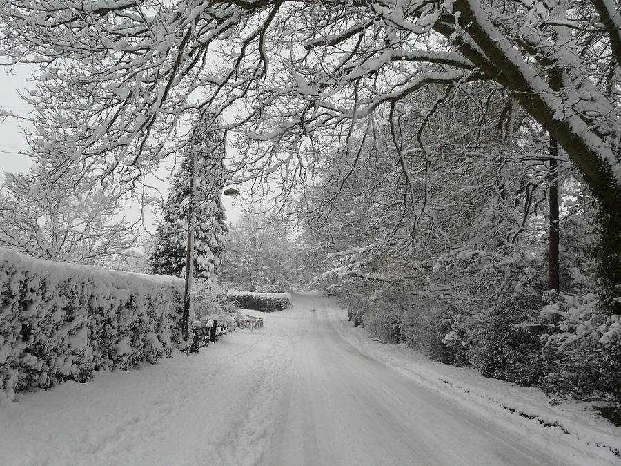 Christmas Cards Photograph - Sugar Road II by Rdr Creative