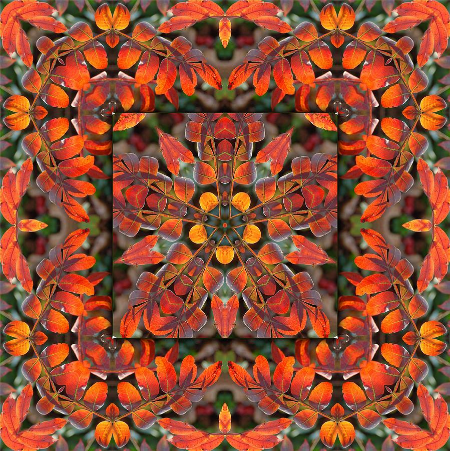 Sumac Digital Art - Sumac Autumn Kaleidoscope by Francesa Miller
